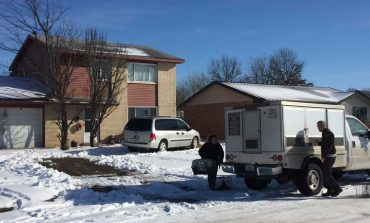 Animal Control Removing Several Cats from Evansville Home