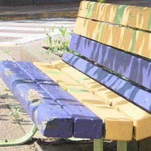 BENCHES NEED PAINT