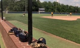 Semi-State Baseball Preview: Castle Knights