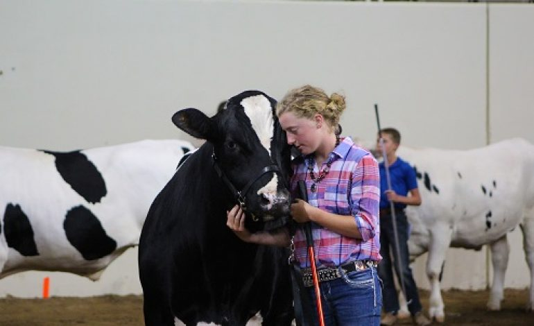Gibson County Kids Compete in Livestock Competition