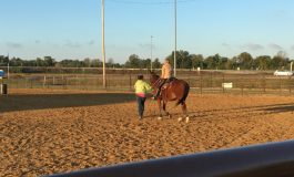 Saddle Up For St. Jude At Henderson County Fairgrounds