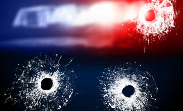 Police Investigating After Shots Fired Into Evansville Home