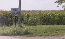 Daviess County hog farm accused of illegally dumping wastewater into public waterways