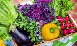 USDA Launches New Website for Food Prep and Safety