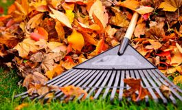 Annual Leaf Pick Up Day Approaching in Evansville