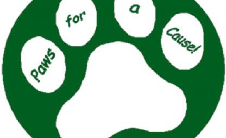 "What's the ""Cause"" in Paws for a Cause?"