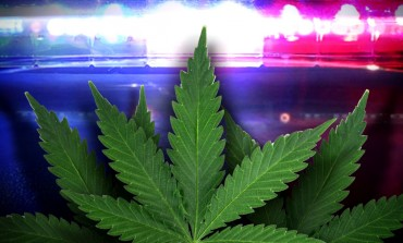 EPD Defends Marijuana Arrests